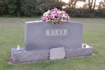 WEBB, FAMILY MARKER - Franklin County, Illinois | FAMILY MARKER WEBB - Illinois Gravestone Photos