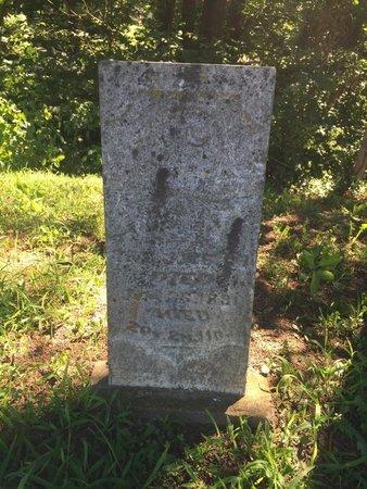 WELCH, IDA A - Franklin County, Illinois | IDA A WELCH - Illinois Gravestone Photos