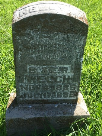 WELCH, NELLY - Franklin County, Illinois | NELLY WELCH - Illinois Gravestone Photos