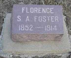 BOTTENBERG, FLORENCE SAMANTHA ANGELENE - Fulton County, Illinois | FLORENCE SAMANTHA ANGELENE BOTTENBERG - Illinois Gravestone Photos