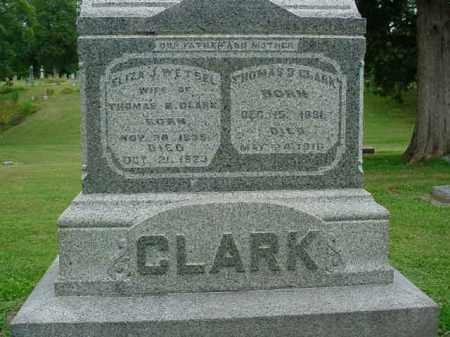 CLARK, THOMAS B. - Fulton County, Illinois | THOMAS B. CLARK - Illinois Gravestone Photos