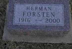 FORSTEN, HERMAN - Fulton County, Illinois | HERMAN FORSTEN - Illinois Gravestone Photos