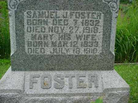 FOSTER, MARY - Fulton County, Illinois | MARY FOSTER - Illinois Gravestone Photos