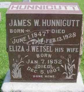 HUNNICUTT, ELIZA JANE - Fulton County, Illinois | ELIZA JANE HUNNICUTT - Illinois Gravestone Photos