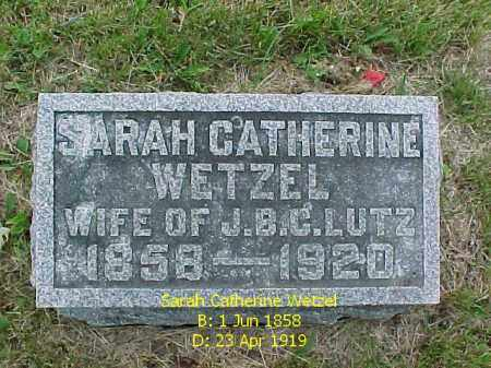 LUTZ, SARAH CATHERINE - Fulton County, Illinois | SARAH CATHERINE LUTZ - Illinois Gravestone Photos