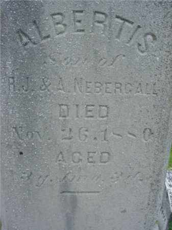 NEBERGALL, ALBERTIS - Fulton County, Illinois | ALBERTIS NEBERGALL - Illinois Gravestone Photos