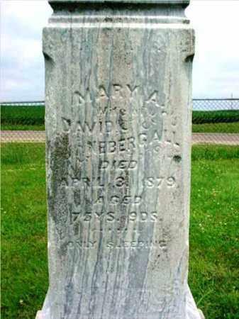 NEBERGALL, MARY A. - Fulton County, Illinois | MARY A. NEBERGALL - Illinois Gravestone Photos