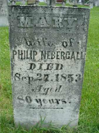 NEBERGALL, MARY - Fulton County, Illinois   MARY NEBERGALL - Illinois Gravestone Photos