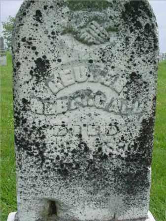 NEBERGALL, RUEBEN - Fulton County, Illinois | RUEBEN NEBERGALL - Illinois Gravestone Photos