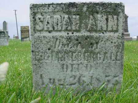 NEBERGALL, SARAH ANN - Fulton County, Illinois | SARAH ANN NEBERGALL - Illinois Gravestone Photos