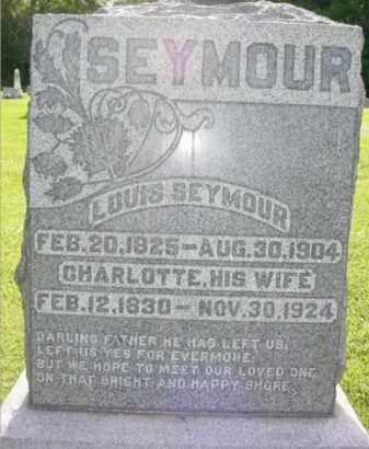 SEYMOUR, CHARLOTTE - Fulton County, Illinois | CHARLOTTE SEYMOUR - Illinois Gravestone Photos