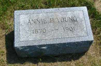 YOUNG, ANNIE B. - Fulton County, Illinois   ANNIE B. YOUNG - Illinois Gravestone Photos