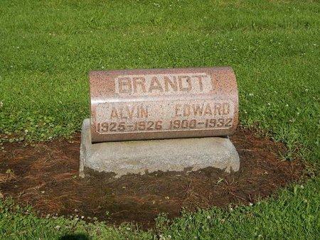 BRANDT, ALVIN - Grundy County, Illinois | ALVIN BRANDT - Illinois Gravestone Photos