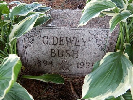 BUSH, GEORGE DEWEY - Grundy County, Illinois | GEORGE DEWEY BUSH - Illinois Gravestone Photos