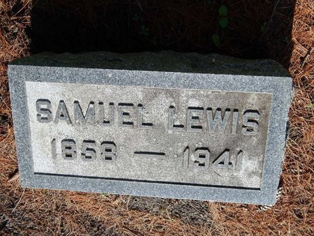LEWIS, SAMUEL - Grundy County, Illinois | SAMUEL LEWIS - Illinois Gravestone Photos