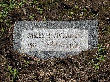 MCGAHEY, JAMES T - Grundy County, Illinois   JAMES T MCGAHEY - Illinois Gravestone Photos