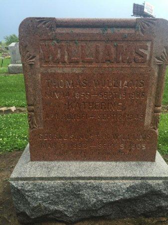 WILLIAMS, GEORGE - Grundy County, Illinois | GEORGE WILLIAMS - Illinois Gravestone Photos