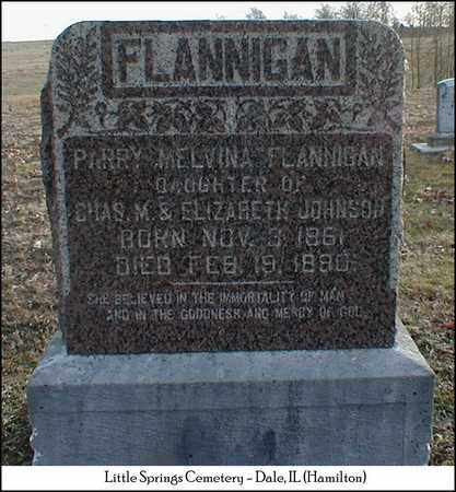 FLANNIGAN, PARRY MELVINA - Hamilton County, Illinois | PARRY MELVINA FLANNIGAN - Illinois Gravestone Photos