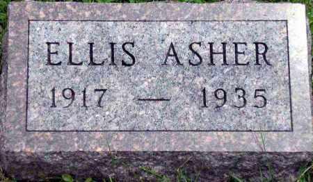 ASHER, ELLIS - Hancock County, Illinois | ELLIS ASHER - Illinois Gravestone Photos