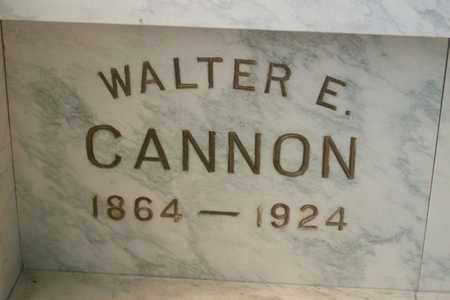 CANNON, WALTER EVERETT - Hancock County, Illinois | WALTER EVERETT CANNON - Illinois Gravestone Photos