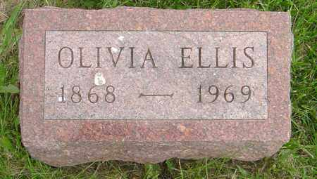 ELLIS, OLIVIA - Hancock County, Illinois   OLIVIA ELLIS - Illinois Gravestone Photos