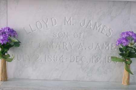 JAMES, LLOYD - Hancock County, Illinois   LLOYD JAMES - Illinois Gravestone Photos