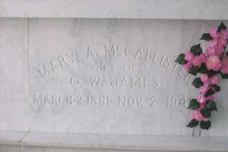 MCCALLISTER JAMES, MARY ANN - Hancock County, Illinois | MARY ANN MCCALLISTER JAMES - Illinois Gravestone Photos