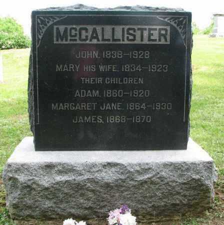 MCCALLISTER, JOHN - Hancock County, Illinois | JOHN MCCALLISTER - Illinois Gravestone Photos