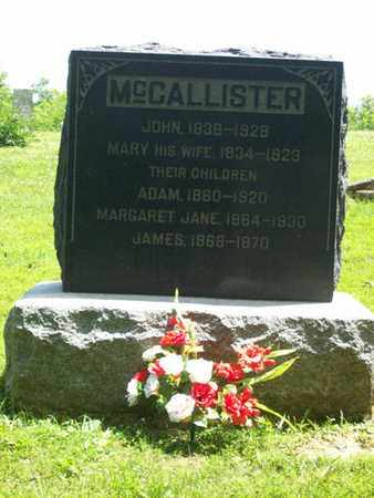 MCCALLISTER, MARGARET JANE - Hancock County, Illinois | MARGARET JANE MCCALLISTER - Illinois Gravestone Photos
