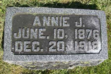 MILLER, ANNA JANE - Hancock County, Illinois | ANNA JANE MILLER - Illinois Gravestone Photos