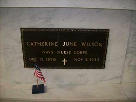 WILSON, CATHERINE JUNE - Hancock County, Illinois | CATHERINE JUNE WILSON - Illinois Gravestone Photos