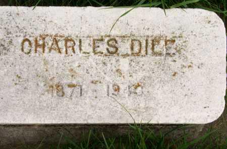 DILE, CHARLES - Henderson County, Illinois   CHARLES DILE - Illinois Gravestone Photos