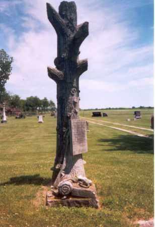 EVANS, GEORGE - Henderson County, Illinois   GEORGE EVANS - Illinois Gravestone Photos