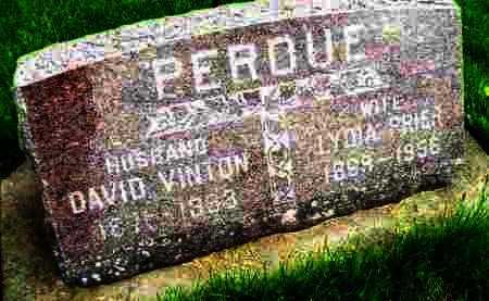 PERDUE, LYDIA CHARLOTTE PRIER - Henderson County, Illinois | LYDIA CHARLOTTE PRIER PERDUE - Illinois Gravestone Photos