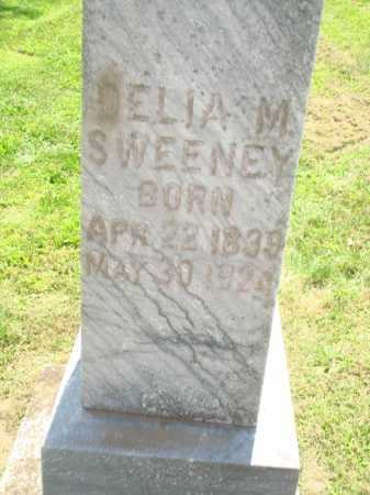 GREEN SWEENEY, DELLA MARIA - Iroquois County, Illinois | DELLA MARIA GREEN SWEENEY - Illinois Gravestone Photos