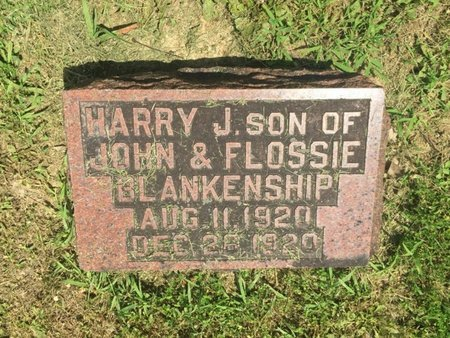 BLANKENSHIP, HARRY J - Jefferson County, Illinois | HARRY J BLANKENSHIP - Illinois Gravestone Photos