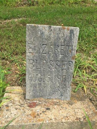 BLOSSER, ELIZABETH - Jefferson County, Illinois | ELIZABETH BLOSSER - Illinois Gravestone Photos