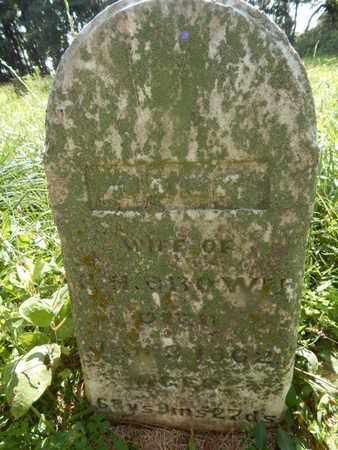 BROWN, JANE - Jefferson County, Illinois | JANE BROWN - Illinois Gravestone Photos