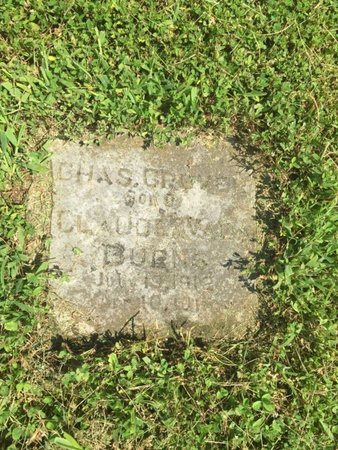 BURNS, CHARLES GROVER - Jefferson County, Illinois | CHARLES GROVER BURNS - Illinois Gravestone Photos