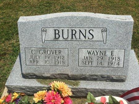 BURNS, CHARLES GROVER - Jefferson County, Illinois | CHARLES GROVER BURNS - Illinois Gravestone Photos