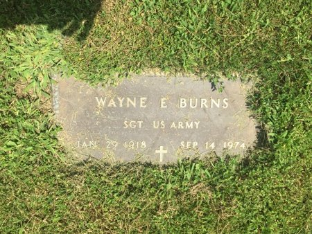 BURNS (VETERAN), WAYNE E - Jefferson County, Illinois | WAYNE E BURNS (VETERAN) - Illinois Gravestone Photos