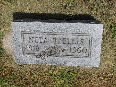 ELLIS, NETA T - Jefferson County, Illinois   NETA T ELLIS - Illinois Gravestone Photos