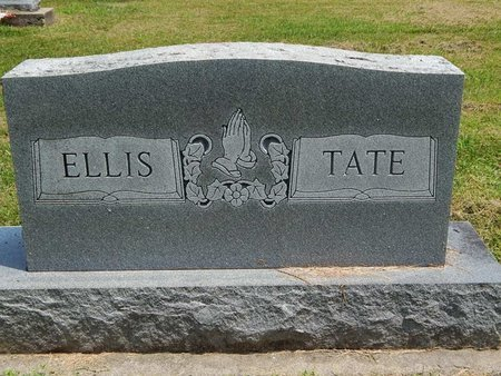 ELLIS TATE, FAMILY MARKER - Jefferson County, Illinois | FAMILY MARKER ELLIS TATE - Illinois Gravestone Photos