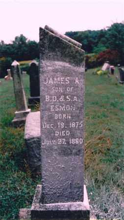 ESMON, JAMES A. - Jefferson County, Illinois | JAMES A. ESMON - Illinois Gravestone Photos