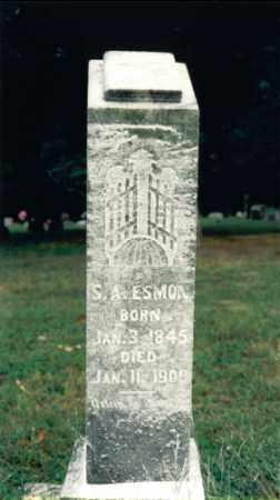 WILLIAMSON ESMON, SARAH ANN - Jefferson County, Illinois | SARAH ANN WILLIAMSON ESMON - Illinois Gravestone Photos