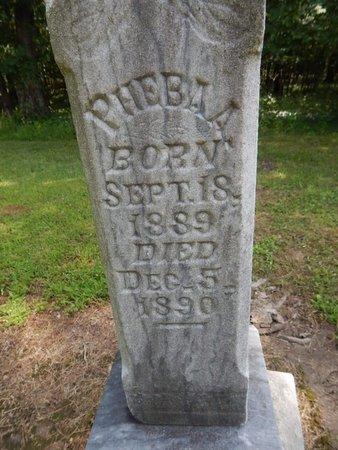 GARRISON, PHEBA A - Jefferson County, Illinois | PHEBA A GARRISON - Illinois Gravestone Photos