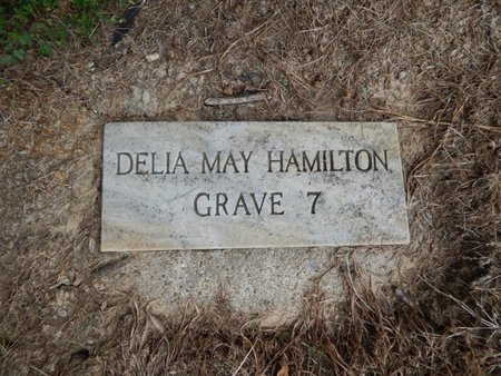 HAMILTON, DELIA MAY - Jefferson County, Illinois | DELIA MAY HAMILTON - Illinois Gravestone Photos
