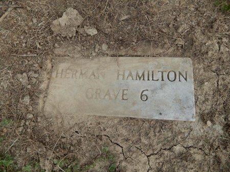 HAMILTON, HERMAN - Jefferson County, Illinois | HERMAN HAMILTON - Illinois Gravestone Photos