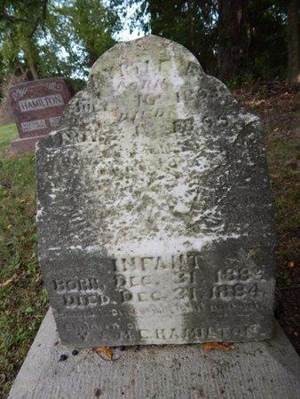 HAMILTON, INFANT - Jefferson County, Illinois | INFANT HAMILTON - Illinois Gravestone Photos