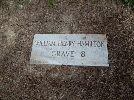 HAMILTON, WILLIAM HENRY - Jefferson County, Illinois   WILLIAM HENRY HAMILTON - Illinois Gravestone Photos